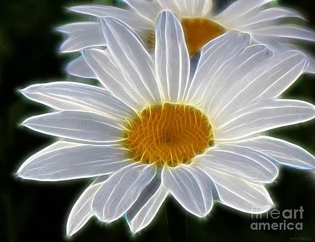 Fresh As A Daisy by Kathie McCurdy
