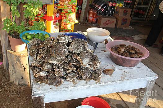 Fresh Oysters Barre de Navidad by Linda Queally