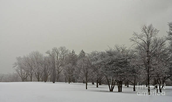 Fresh Snow by Margaret Guest