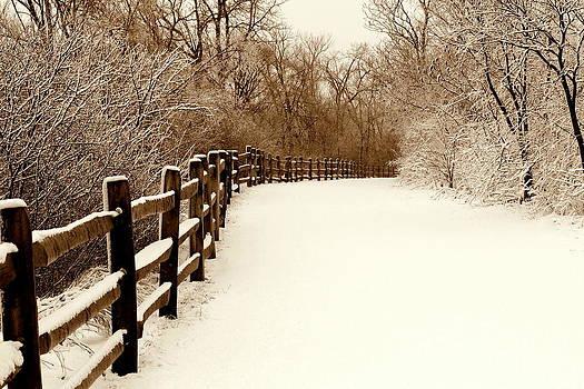 Rosanne Jordan - Fresh Snow