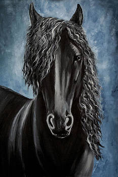 Friesian Beauty by Agnieszkaa Dzida
