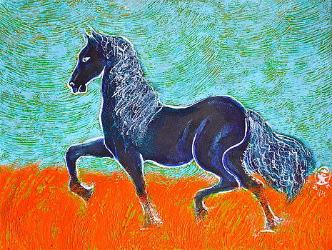 Ion vincent DAnu - Friesian Horse