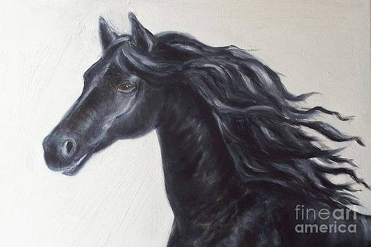 Friesian by Relly Peckett