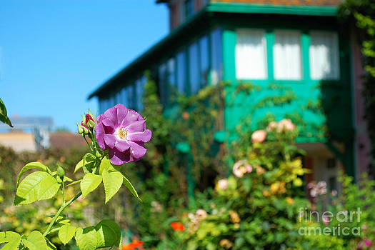 From Monets Garden 1 by Katerina Vodrazkova