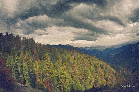 Angela Stanton - From Moro Rock of the Sequoias