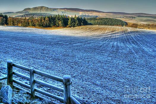 Frosty day in West Lothian by David Birchall