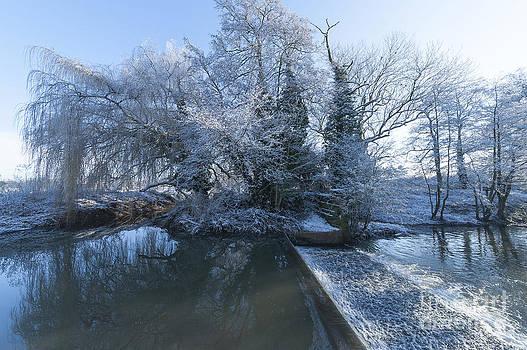 Svetlana Sewell - Frozen Iseland