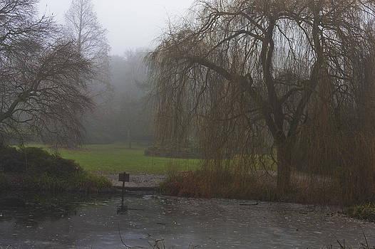 Frozen Pond by Maj Seda