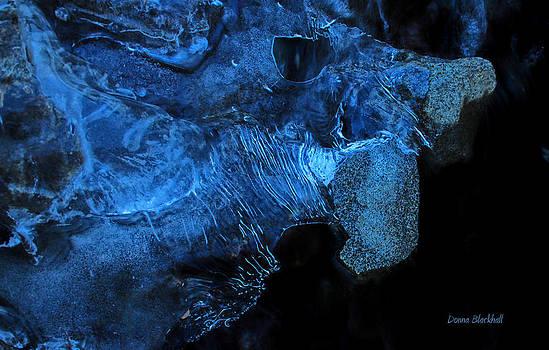 Donna Blackhall - Frozen Stone Fish