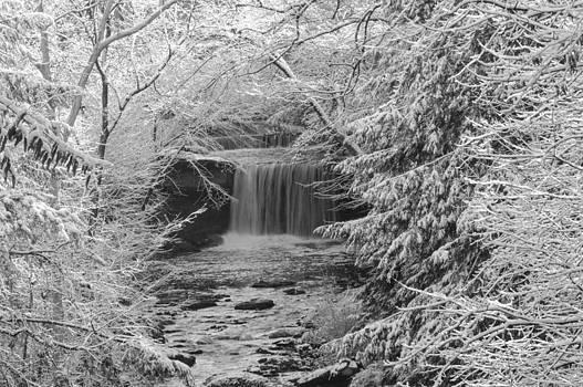 Frozen Tunnel by Jim Wilcox