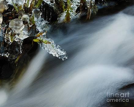 Frozen Wanderland IV by Katerina Vodrazkova