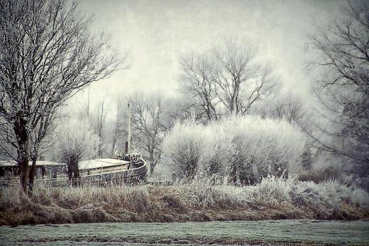 Frozen World by Annie  Snel