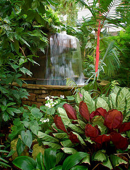 Ft Worth Botanic Garden Conservatory by Janet Maloy