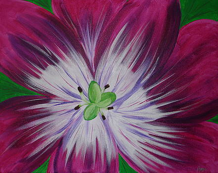 Full Bloom Tulip by Angie Butler