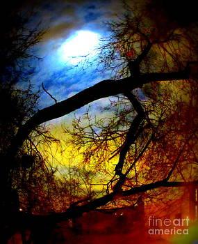 Full Crow Moon by Maria Scarfone