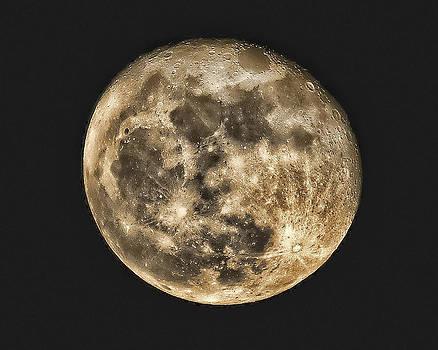 Full Moon by Boyd Alexander