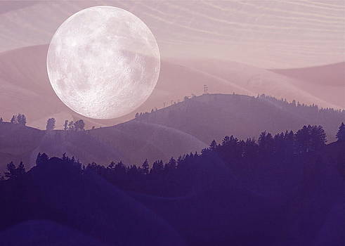 Full Moon in Sun Valley by Amy G Taylor