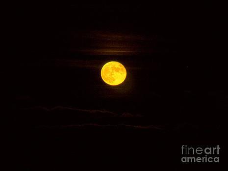 Full moon by Kathy DesJardins