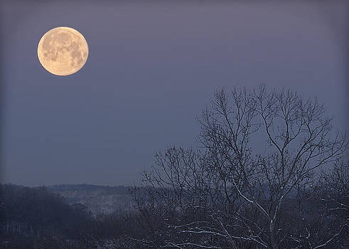 Full Moon on Blue by Shirley Tinkham