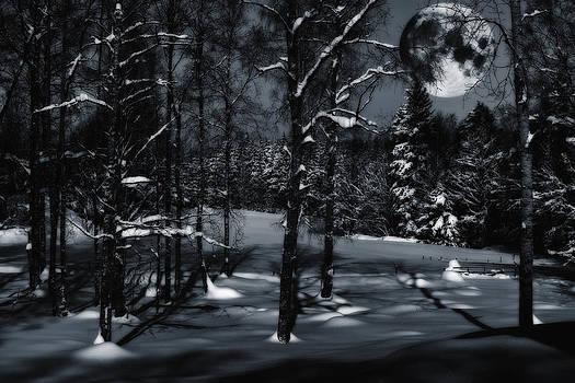 Full Moon Over Snowy Winter Landscape by Christian Lagereek