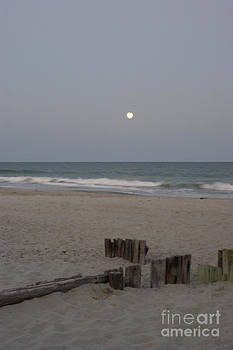 Full Moon Sitting by Sherry Vance