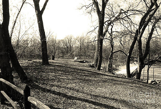 Fullersburg Woods Landscape In Sepiatone by ImagesAsArt Photos And Graphics