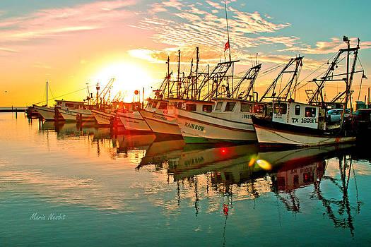 Fulton Harbor by Maria Nesbit
