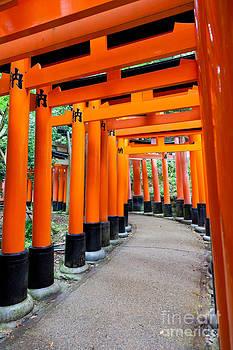 Fototrav Print - Fushimi Inari shrine Kyoto Japan