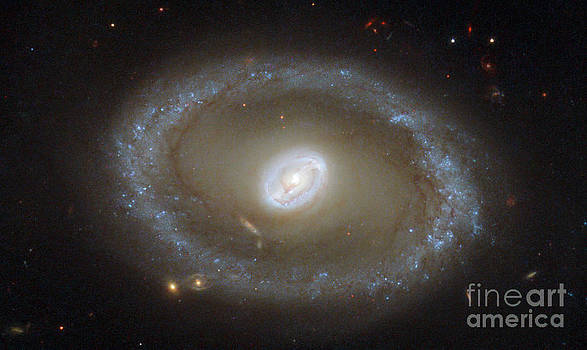 Science Source - Galaxy Ngc 3081
