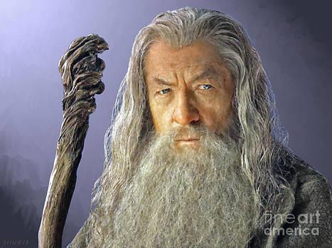 Gandalf by Stephen Shub