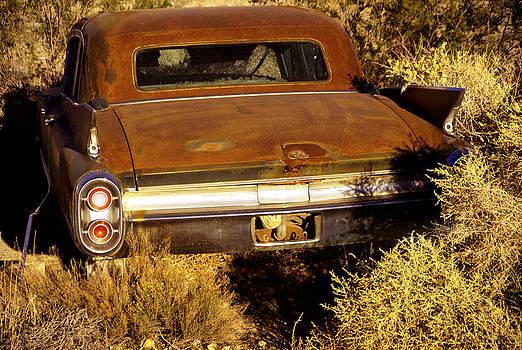 Gangster Desert Cadillac by Martin Sullivan