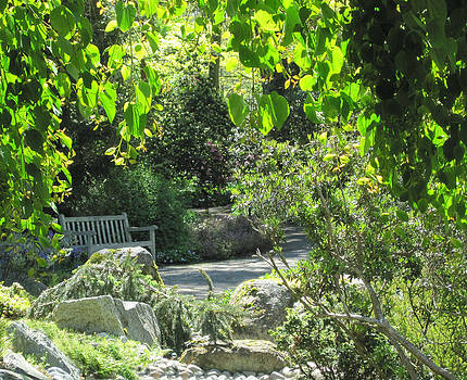 Marilyn Wilson - Garden Bench