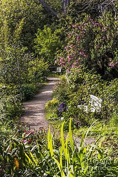 Kate Brown - Garden Benches