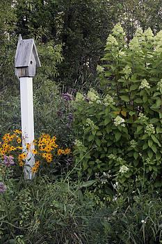 Garden bird house by Kevin Snider