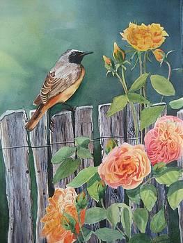 Garden-Bird by Stephanie Zobrist