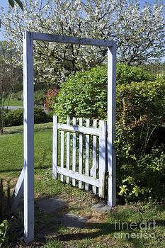 BERNARD JAUBERT - Garden door
