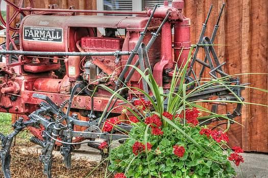 Garden Farmall by Heather Allen