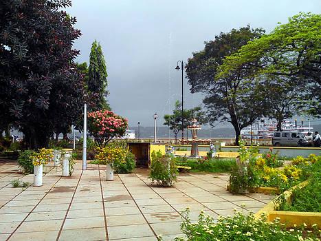 Garden in Goa by Adrian Barreto