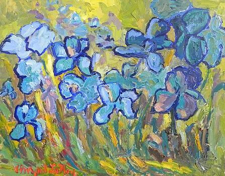 Garden Iris's by Nancy LaMay