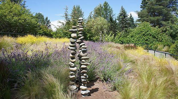 Garden of Zen by Mark Cardon