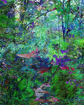 Garden Path by Robert St Clair