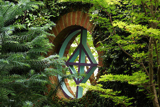 Garden Window by Kim Pate