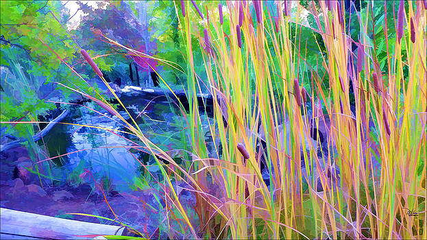 Garden with Koi Pond and Cattails by Douglas MooreZart