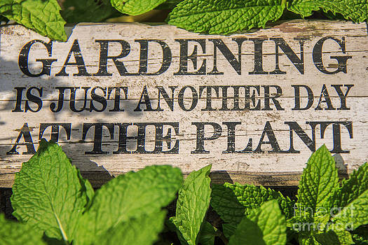 Gardening Is Just Another Day at the Plant by Nancy Harrison