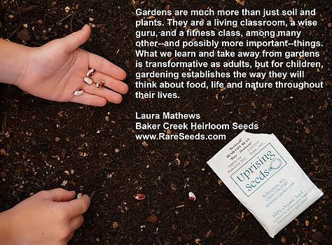 Gardens Are Much More by Jon Simmons