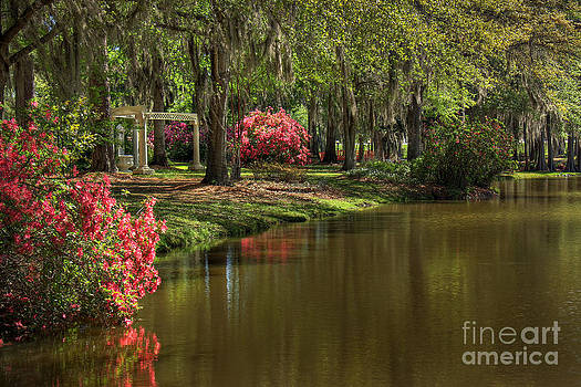 Gardens of the South by Leslie Kirk