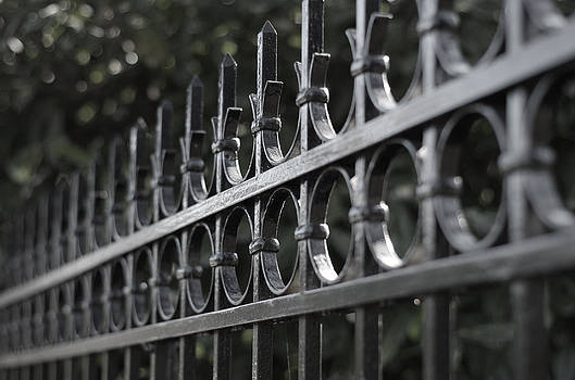Marilyn Wilson - Government House Fence