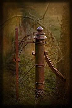 Liz  Alderdice - Gate Post
