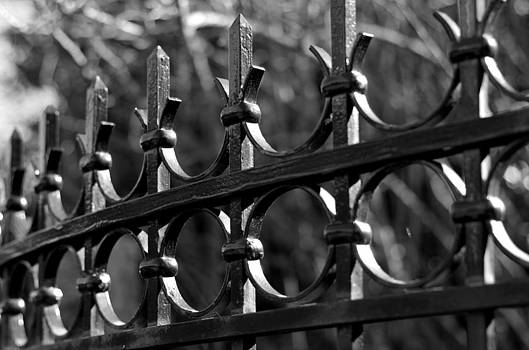 Marilyn Wilson - Fence at Government House -bw