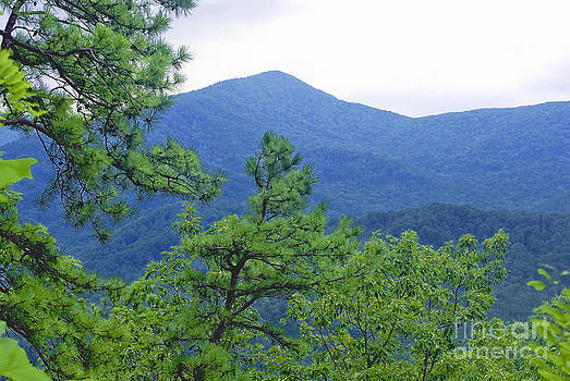 Gatlingburg Mountains by Charles Willis